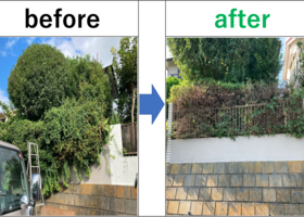 植木の剪定|株式会社フォーエバー|神奈川 遺品整理 生前整理 特殊清掃|